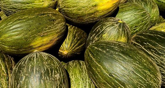 melones1